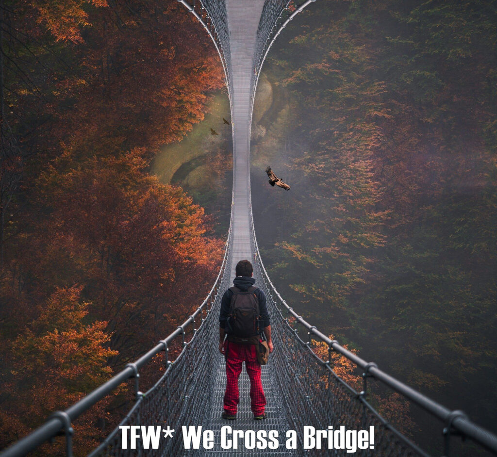 A surreal photo of a young person standing at the foot of a bridge which appears to extend into eternity -- the bridge appears to cross over the globe, with no end in sight. From this perspective several birds and even a skydiver can be seen below.